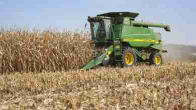 Photo of Dry Spell Allowing Farmers To Make Progress For Fall Harvest