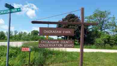 Photo of Chickasaw County Conservation to hold free beginners bird watching workshop