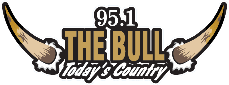 951 The Bull