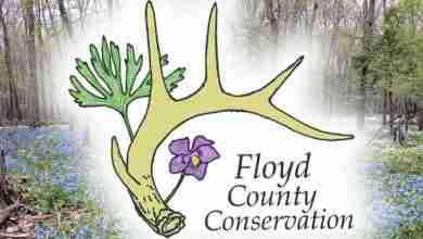 Photo of Floyd County Conservation to offer monarch tagging, river float, and a hunter education course this fall