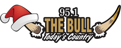 95.1 The Bull