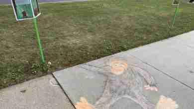 Photo of Charles City Public Library doing 'Bigfoot Cinderella' book walk on bike trail
